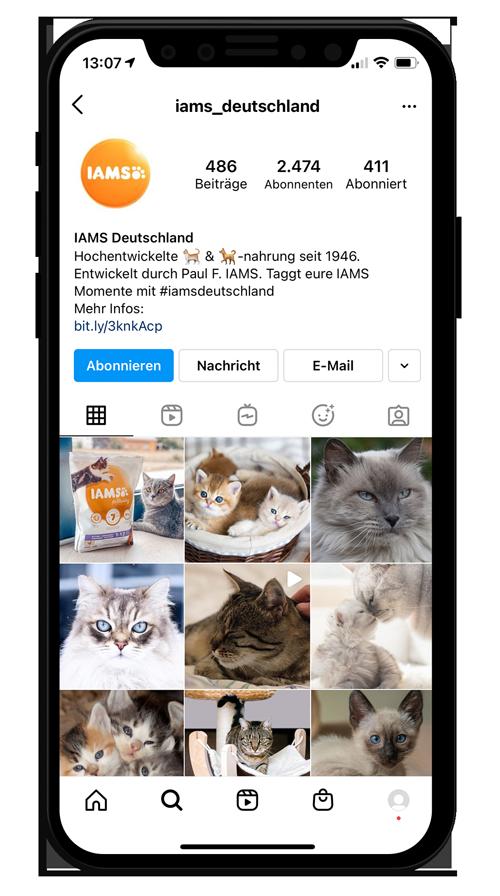 Instagram Account iams